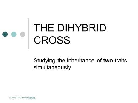 THE DIHYBRID CROSS Studying the inheritance of two traits simultaneously © 2007 Paul Billiet ODWSODWS.