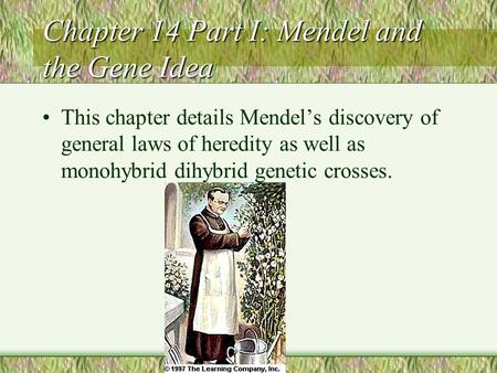 Chapter 14 Part I: Mendel and the Gene Idea This chapter details Mendel's discovery of general laws of heredity as well as monohybrid dihybrid genetic.