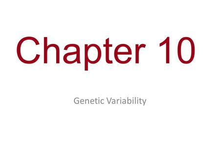Chapter 10 Genetic Variability.