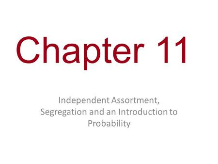 Chapter 11 Independent Assortment, Segregation and an Introduction to Probability.