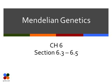 Mendelian Genetics CH 6 Section 6.3 – 6.5. Slide 2 of 26.