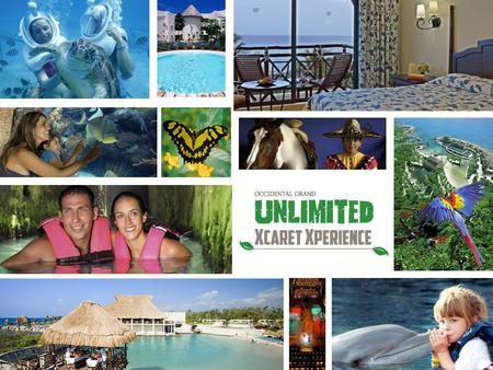 If you want to know Mexico, come and live Xcaret! Occidental Grand Xcaret and Xcaret Park have come together to create a unique product: Unlimited Xcaret.