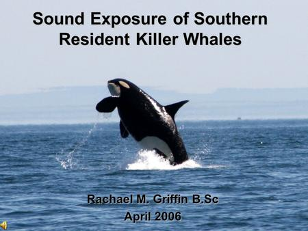 Sound Exposure of Southern Resident Killer Whales Rachael M. Griffin B.Sc April 2006.