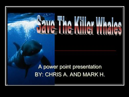 A power point presentation BY: CHRIS A. AND MARK H. A power point presentation BY: CHRIS A. AND MARK H.