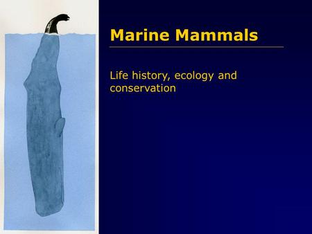 Marine Mammals Life history, ecology and conservation.