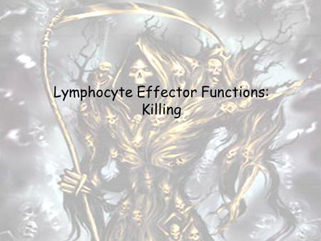 "Lymphocyte Effector Functions: Killing. Major Lymphocyte Subpopulations in Peripheral Blood and Selected Effector Functions B ""Other"" CD8 CD4 Ab production."