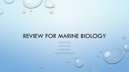 REVIEW FOR MARINE BIOLOGY OCEAN ZONES FOOD CHAINS FOOD WEBS SYMBIOTIC RELATIONSHIPS.