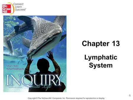 1 Copyright © The McGraw-Hill Companies, Inc. Permission required for reproduction or display. Chapter 13 Lymphatic System.