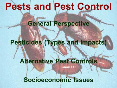 General Perspective Pesticides (Types and Impacts) Alternative Pest Controls Socioeconomic Issues Pests and Pest Control.