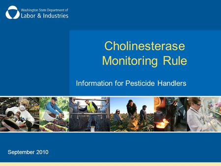 Cholinesterase Monitoring Rule Information for Pesticide Handlers September 2010.