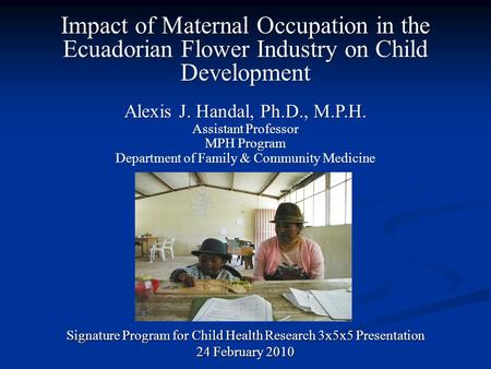 Impact of Maternal Occupation in the Ecuadorian Flower Industry on Child Development Signature Program for Child Health Research 3x5x5 Presentation 24.