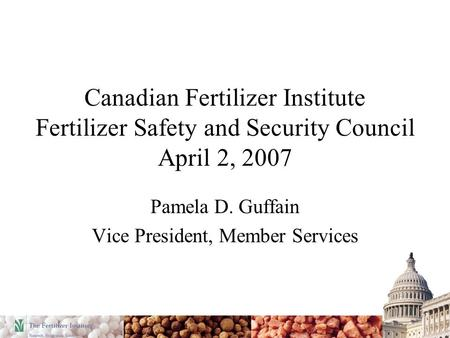 Canadian Fertilizer Institute Fertilizer Safety and Security Council April 2, 2007 Pamela D. Guffain Vice President, Member Services.