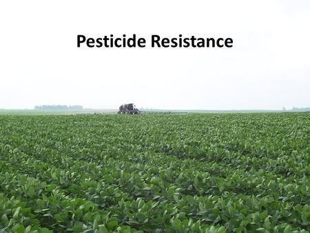 Pesticide Resistance. Outline What is pesticide resistance? How does it occur? Resistance to: – Insecticides – Fungicides – Herbicides How to delay resistance.