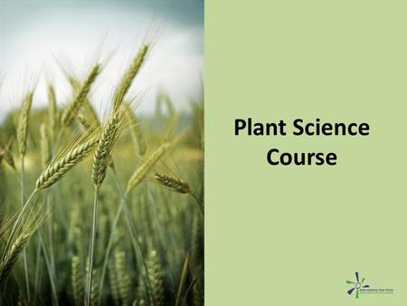 Plant Science Course. Goals Understand how herbicides, pesticides and fertilizers affect health. – Understand the negative respiratory health effects.
