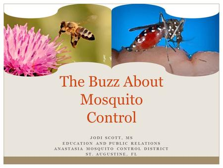 JODI SCOTT, MS EDUCATION AND PUBLIC RELATIONS ANASTASIA MOSQUITO CONTROL DISTRICT ST. AUGUSTINE, FL The Buzz About Mosquito Control.