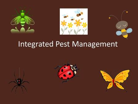 Integrated Pest Management. IPM is a modern ecological approach to managing pests. IPM combines knowledge of the pest with population sampling so that.