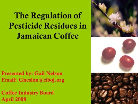 The Regulation of Pesticide Residues in Jamaican Coffee Presented by: Gail Nelson   Coffee Industry Board April 2008.