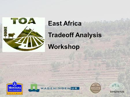 East Africa Tradeoff Analysis Workshop. Workshop goals and strategy Strategy Monday Introduction to TOA approach Tuesday AM Conceptual framework Tuesday.