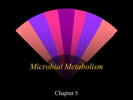 Microbial Metabolism Chapter 5. Metabolism - all of the chemical reactions within a living organism w 1. Catabolism ( Catabolic ) breakdown of complex.