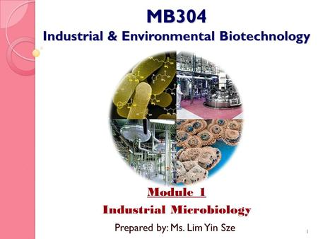 MB304 Industrial & Environmental Biotechnology Module 1 Industrial Microbiology 1 Prepared by: Ms. Lim Yin Sze.