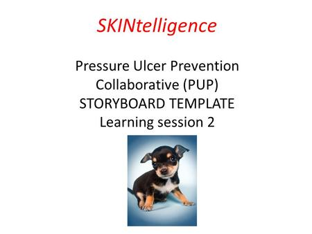 Pressure Ulcer Prevention (PUP) Collaborative Programme February 2014 – December 2014 SKINtelligence Pressure Ulcer Prevention Collaborative (PUP) STORYBOARD.