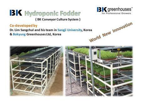 Co-developed by Dr. Lim Sangchul and his team in Sangji University, Korea & Bokyung Greenhouses Ltd, Korea ( BK Conveyor Culture System )