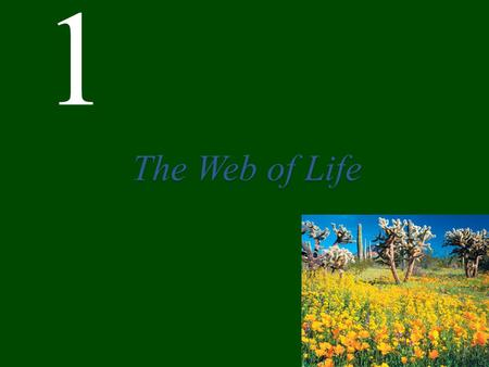 1 The Web of Life Chapter 1 The Web of Life CONCEPT 1.1 Events in the natural world are interconnected. CONCEPT 1.2 Ecology is the scientific study of.