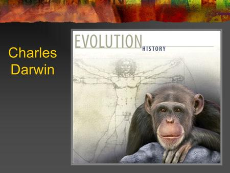Charles Darwin. 1809 - 1882 Most influential contributor to thoughts about evolution The Origin of Species 1859 Presented evidence for changes in species.