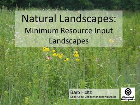 Natural Landscapes: Minimum Resource Input Landscapes Barb Holtz Look About Lodge manager/naturalist.