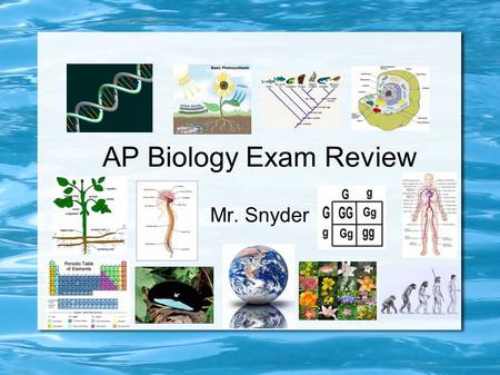 AP Biology Exam Review Mr. Snyder. AP / College Biology A typical introductory college biology course fails 50% of its students As such the AP Bio test.