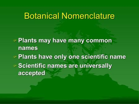 Botanical Nomenclature F Plants may have many common names F Plants have only one scientific name F Scientific names are universally accepted.