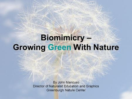 Biomimicry – Growing Green With Nature By John Mancuso Director of Naturalist Education and Graphics Greenburgh Nature Center.