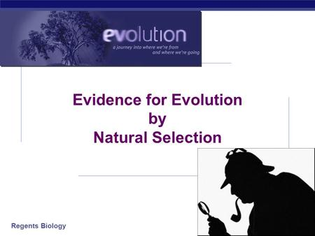 Regents Biology 2006-2007 Evidence for Evolution by Natural Selection.