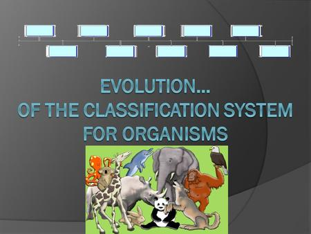 The History of Classification Out of this concept was developed the scale of nature idea that suggested living things were arranged on a scale of perfection,