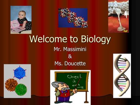 "Welcome to Biology Mr. Massimini & Ms. Doucette. Why Study Biology?? ""Bio"" means life ""Bio"" means life ""logy"" is the study of ""logy"" is the study of Biology."