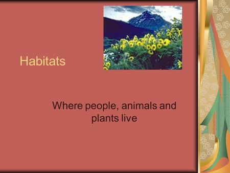 Habitats Where people, animals and plants live Deserts Desert habitats are very dry. They are full of animals and plants who need very little water.