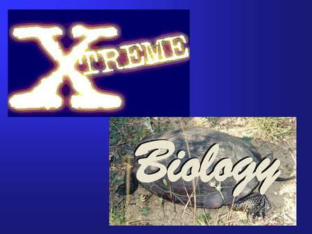 Topics:  Types of extreme environments present on Earth  Adaptations to cell structures required for survival in extreme environments  Residents of.