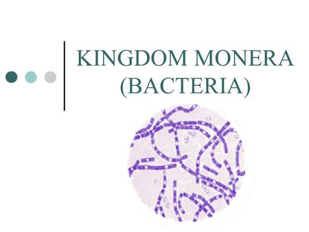 KINGDOM MONERA (BACTERIA). What makes this kingdom unique?  Most abundant organisms on Earth  Outnumber all other organisms combined  More in a handful.