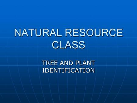 NATURAL RESOURCE CLASS TREE AND PLANT IDENTIFICATION.