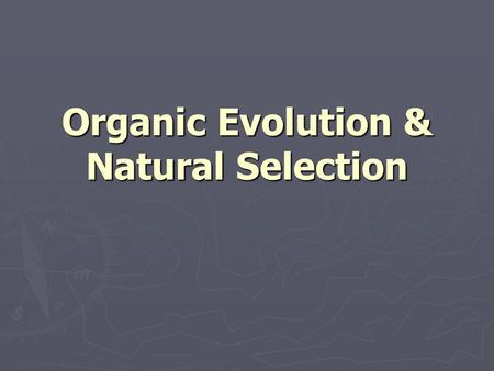 Organic Evolution & Natural Selection. Organic Evolution ► changes in life through time ► development of complex life forms ► development of a variety.