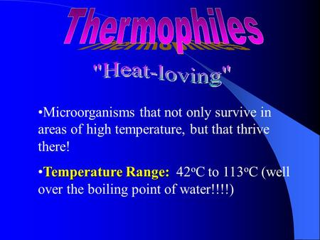 Microorganisms that not only survive in areas of high temperature, but that thrive there! Temperature Range:Temperature Range: 42 o C to 113 o C (well.