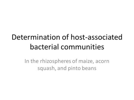 Determination of host-associated bacterial communities In the rhizospheres of maize, acorn squash, and pinto beans.