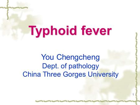 1 Typhoid fever You Chengcheng Dept. of pathology China Three Gorges University.