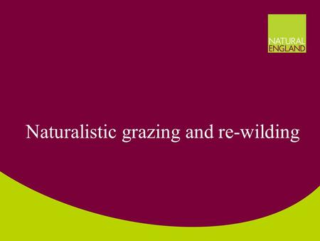 Naturalistic grazing and re-wilding. How do we do conservation? Nature conservation often 'gardening' –Inevitable with small sites –Cultural landscapes.