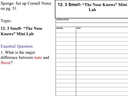 "Sponge: Set up Cornell Notes on pg. 51 Topic: 12. 3 Smell- ""The Nose Knows"" Mini Lab Essential Question: 1. What is the major difference between taste."
