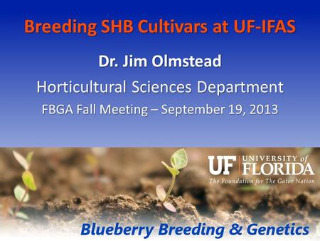Breeding SHB Cultivars at UF-IFAS Dr. Jim Olmstead Horticultural Sciences Department FBGA Fall Meeting – September 19, 2013.