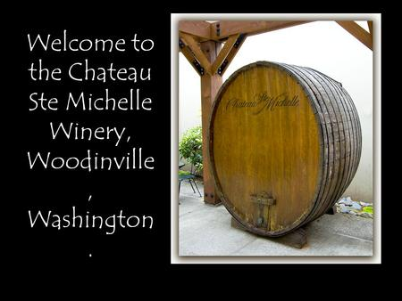 Welcome to the Chateau Ste Michelle Winery, Woodinville, Washington.