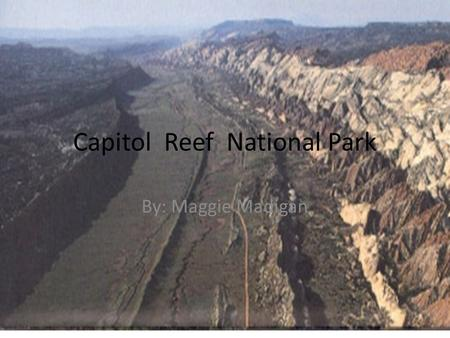 Capitol Reef National Park By: Maggie Madigan. What year did Capitol Reef become a n official National Park President Roosevelt declared Capitol Reef.