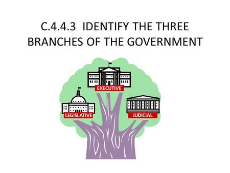 C.4.4.3 IDENTIFY THE THREE BRANCHES OF THE GOVERNMENT.