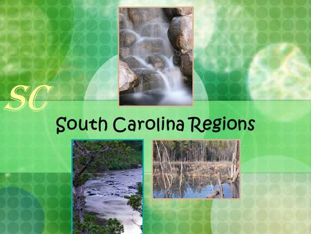 South Carolina Regions SC. Where is South Carolina? Here we are! South Carolina borders the Atlantic Ocean. North America United States of America SC.